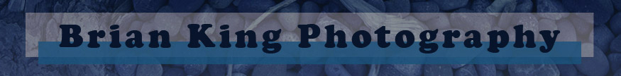 Brian King Photography website banner